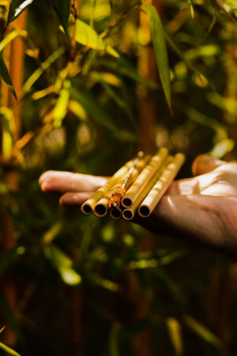 Bambus Trinkhalme Shop
